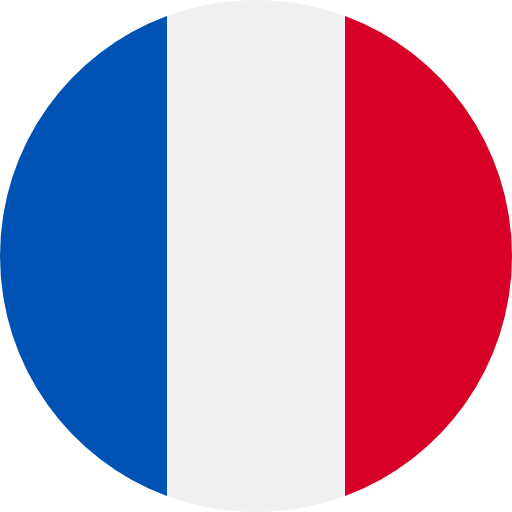 flags/images/circle/fr.png