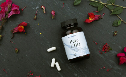 Product Spotlight: Get to Know Our Pure CBD Capsules