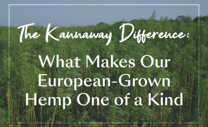The Kannaway Difference: What Makes Our European-Grown Hemp One of a Kind
