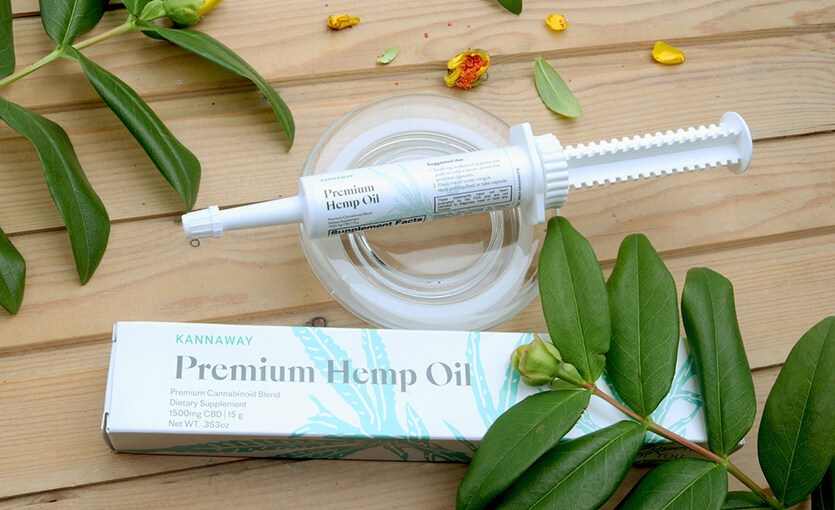 Product Spotlight: Get to Know Premium Hemp Oil Oral Applicator