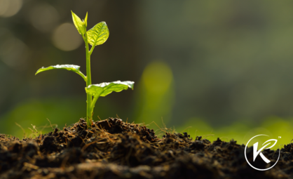 What Does Kannaway's Soil to Sale™ Promise Mean?